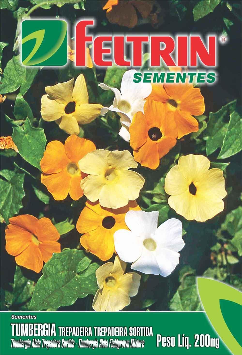 Sementes de Tumbergia Trepadeira Sortida 200mg - Feltrin Linha Flores
