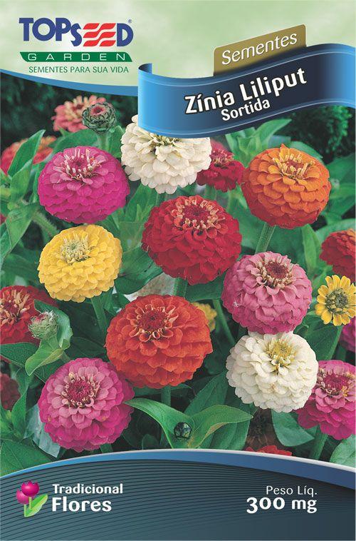 Sementes de Zínia Liliput Sortida 300mg - Topseed Linha Tradicional Flores