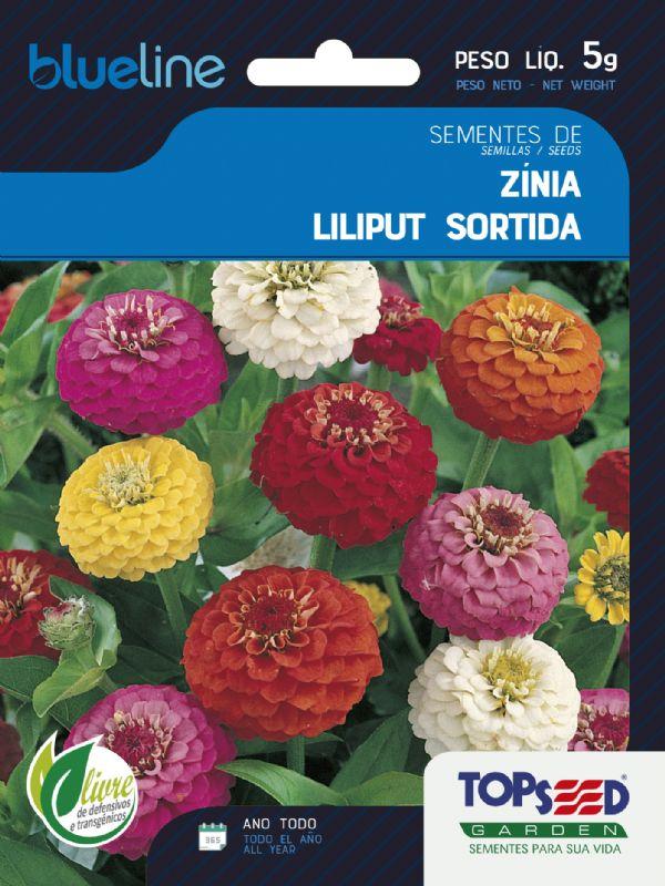 Sementes de Zínia Liliput Sortida 5g - Topseed Blue Line