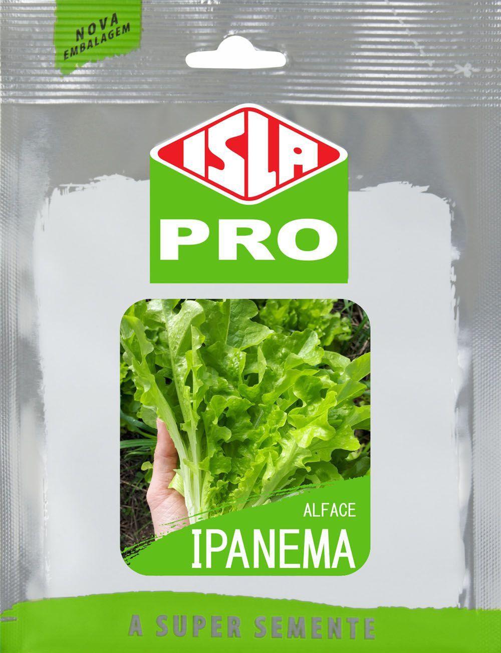 Sementes Importadas de Alface Ipanema Envelope com 100 sementes - Isla Pro