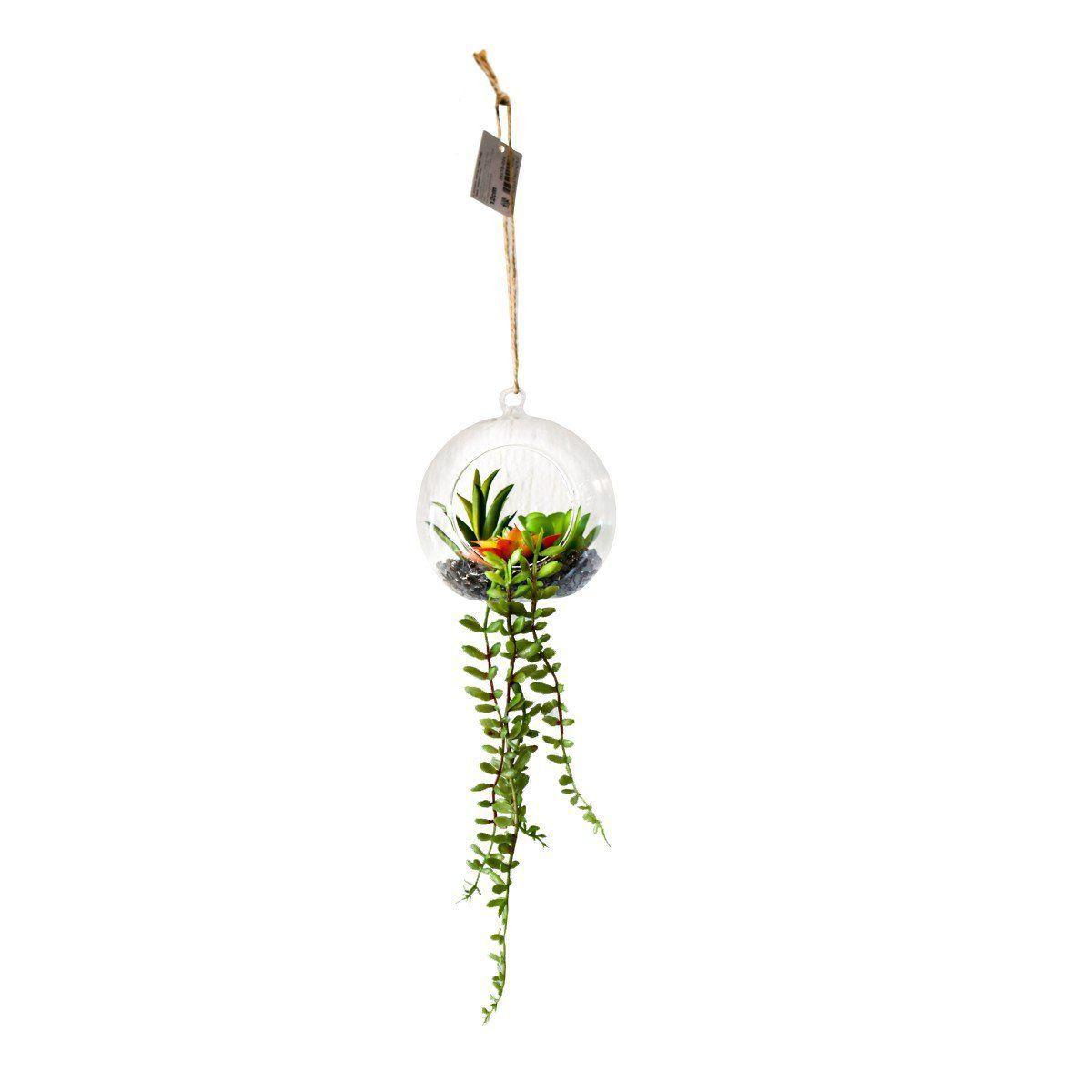 Suculenta Verde e Vermelho com Vaso de Vidro 12cm - 35175001