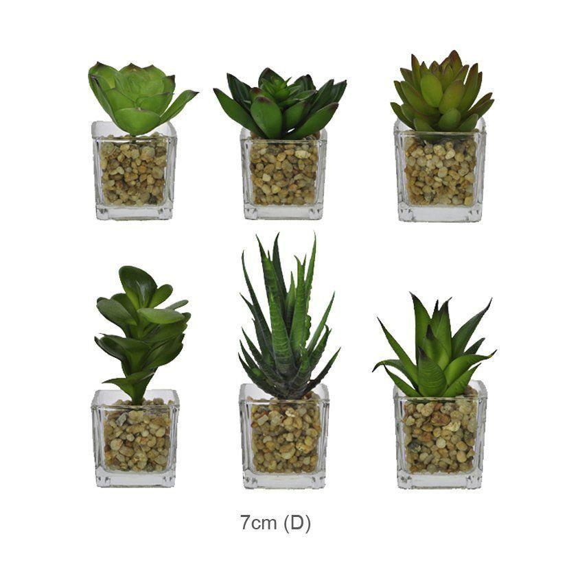 Suculentas artificiais sortidas em vasos de vidro quadrados 06 unidades 28476001