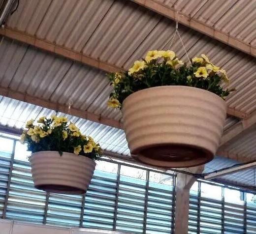 Suporte para Vaso de Planta em Aço Revestido com 4 Ganchos 40cm