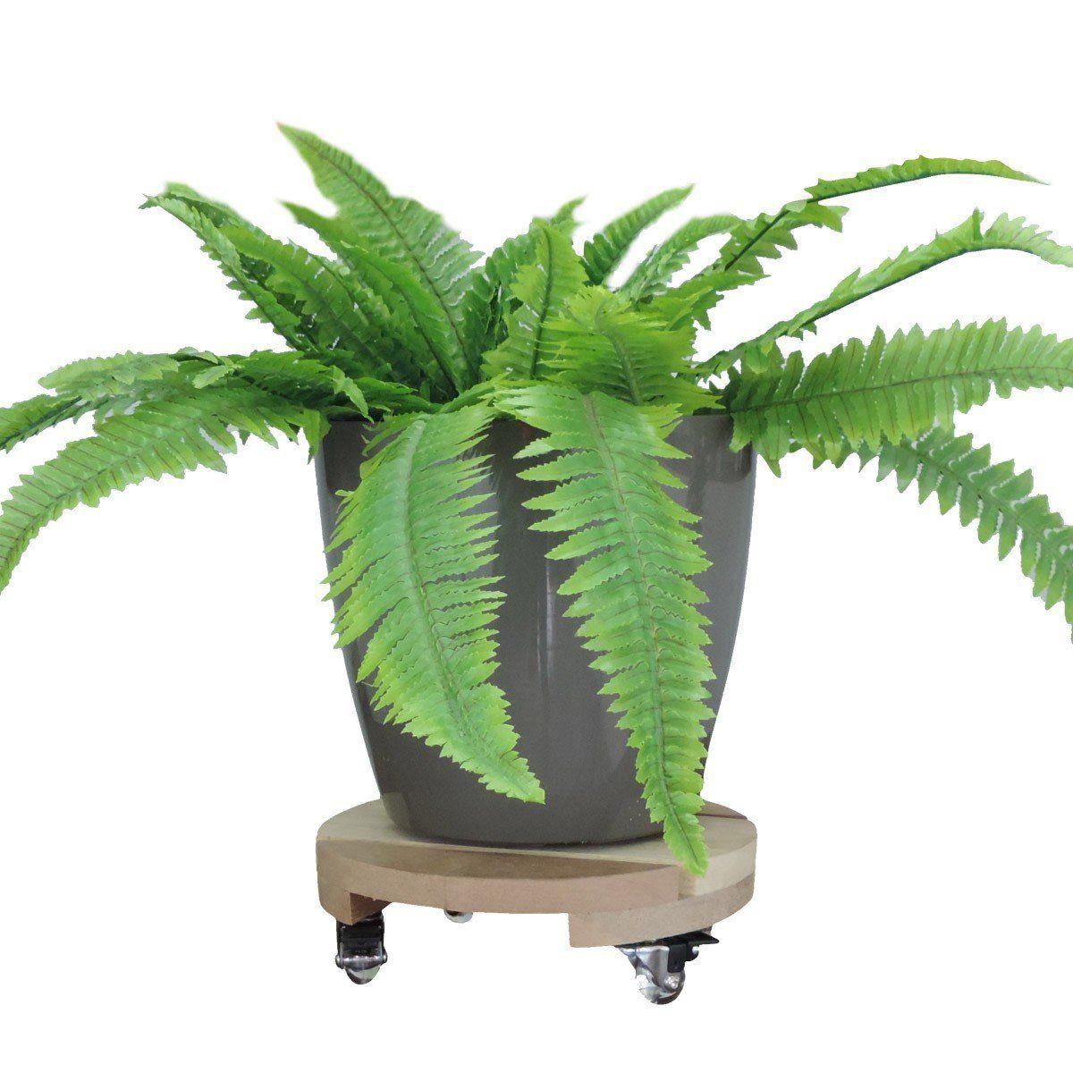 Suporte para Vasos de Plantas Cedrilho com rodízios anti risco Redondo 30cm suporta até 160kg