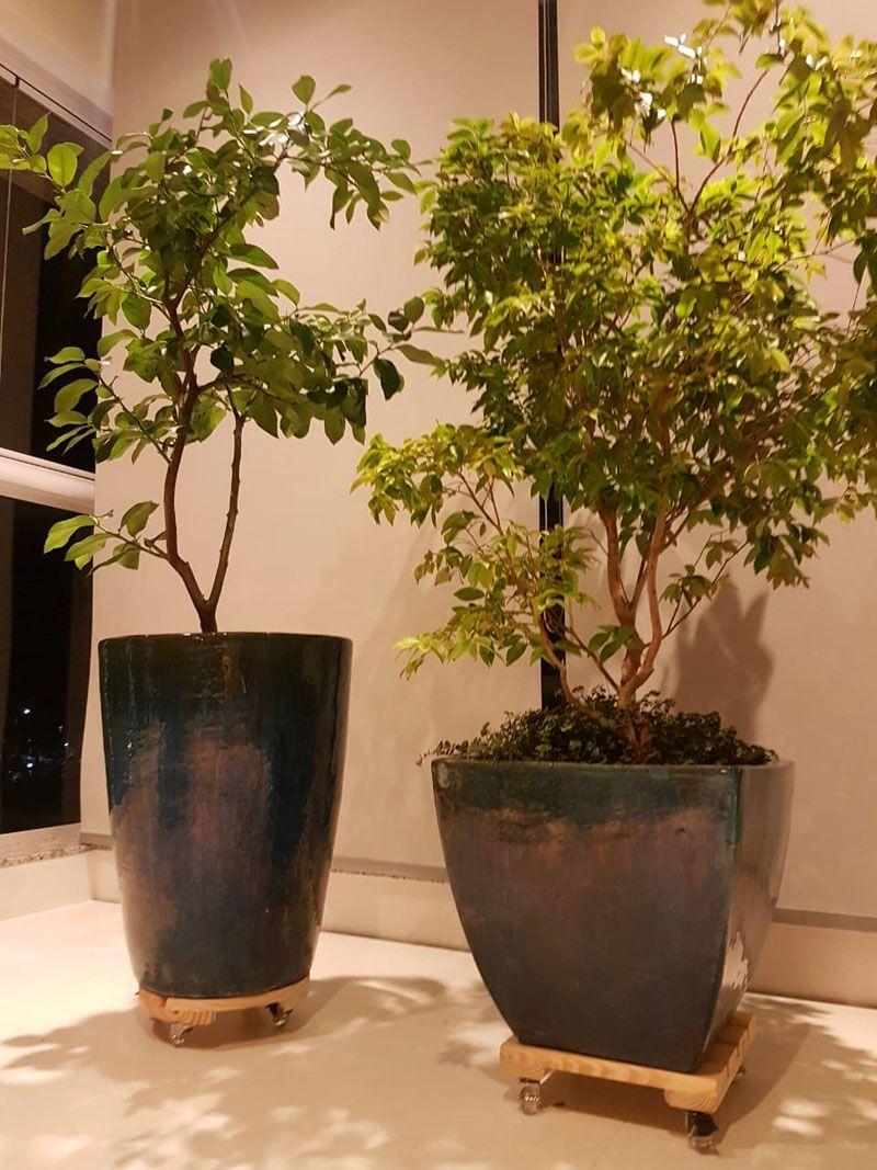 Suporte para Vasos de Plantas Preto Pinus com rodízios anti risco Redondo 30cm suporta até 160kg