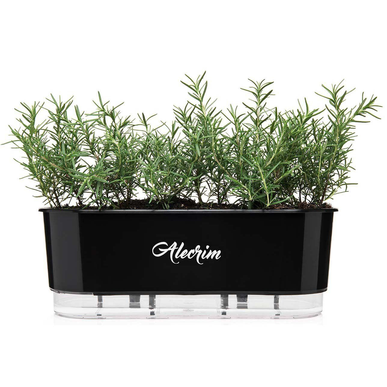 Vaso Autoirrigável Jardineira Alecrim Preto 40cm Raiz