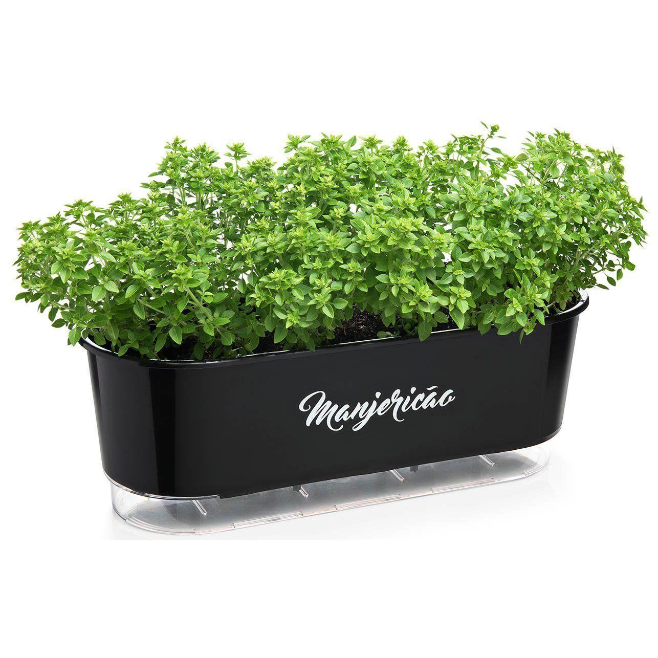 Vaso Autoirrigável Jardineira Manjericão Preto 40cm Raiz
