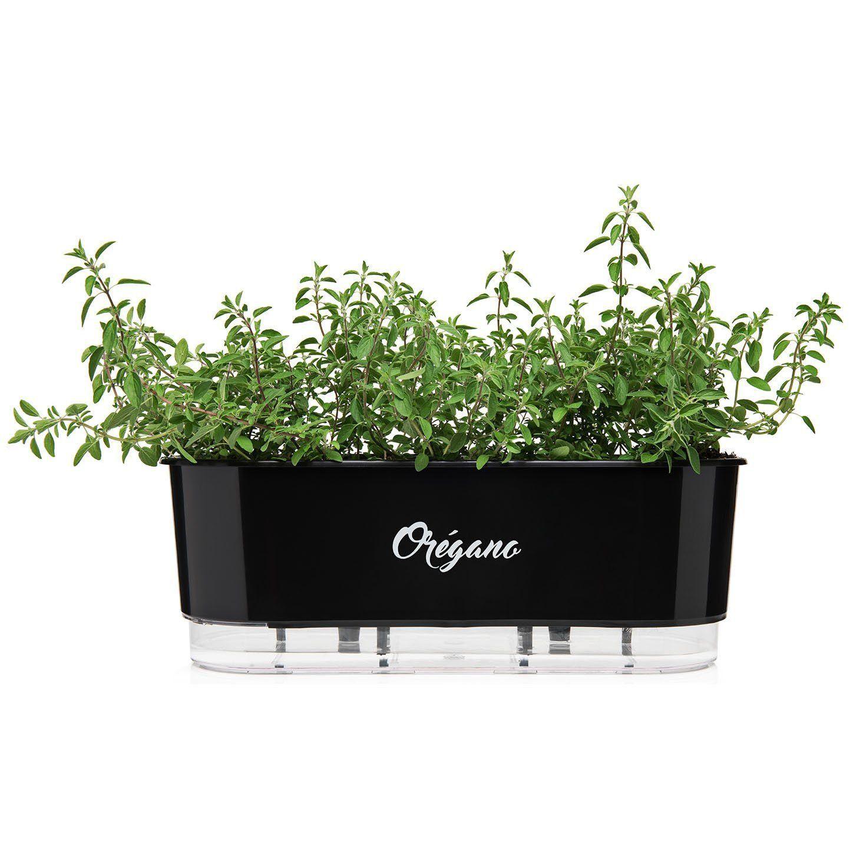 Vaso Autoirrigável Jardineira Orégano Preto 40cm Raiz