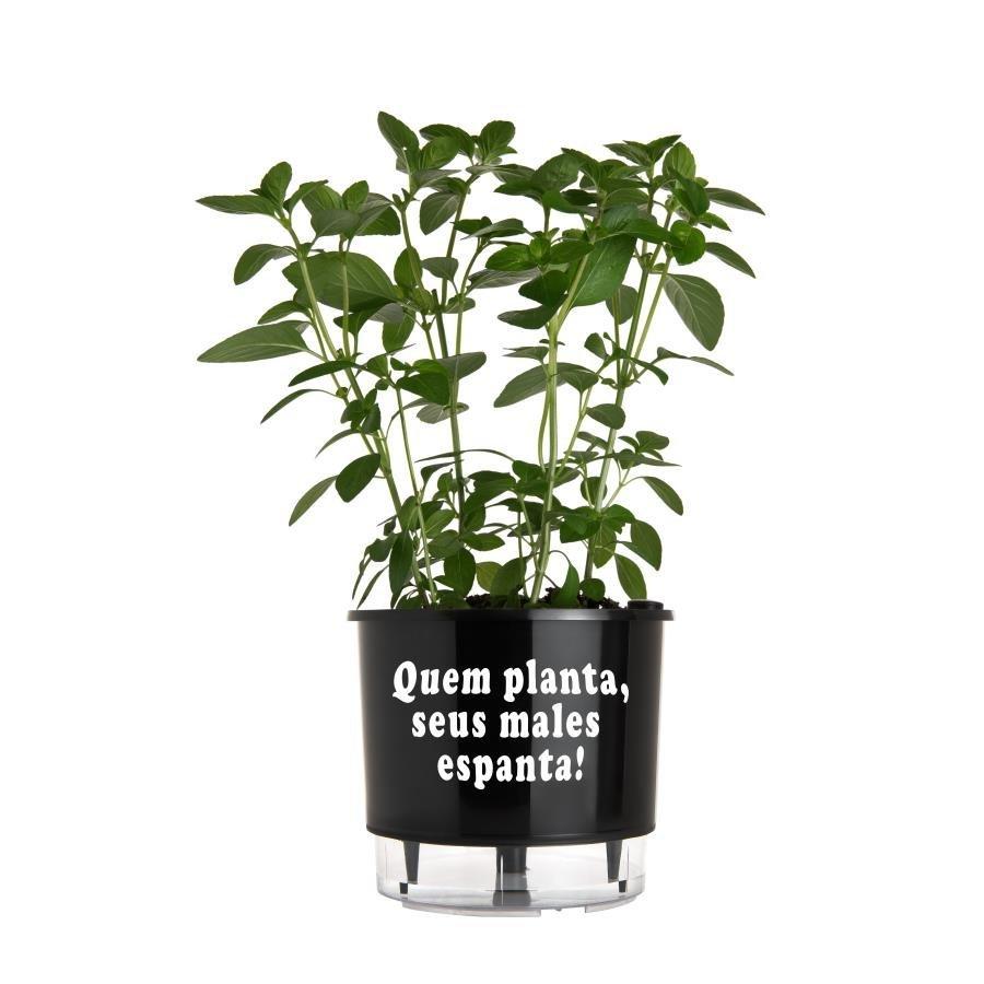 Vaso Autoirrigável Médio N03 Raiz Preto Linha Frases 16cm x 14cm Quem planta, seus males espanta!