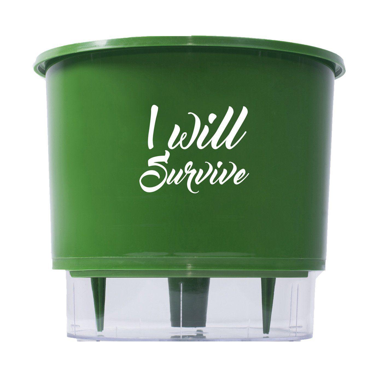 Vaso Autoirrigável Médio N03 Raiz Verde Linha Frases 16cm x 14cm I Will Survive