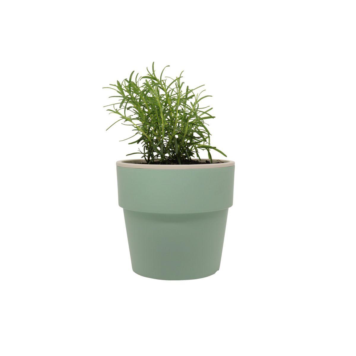 Vaso Autoirrigável Médio Verde Menta Linha Plantar < Ou >