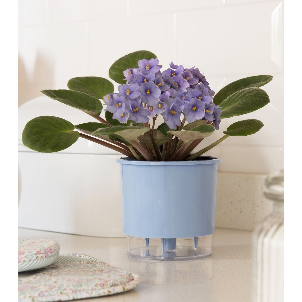 Vaso Autoirrigável Pequeno N02 12 cm x 11 cm Azul Serenity Linha Wishes