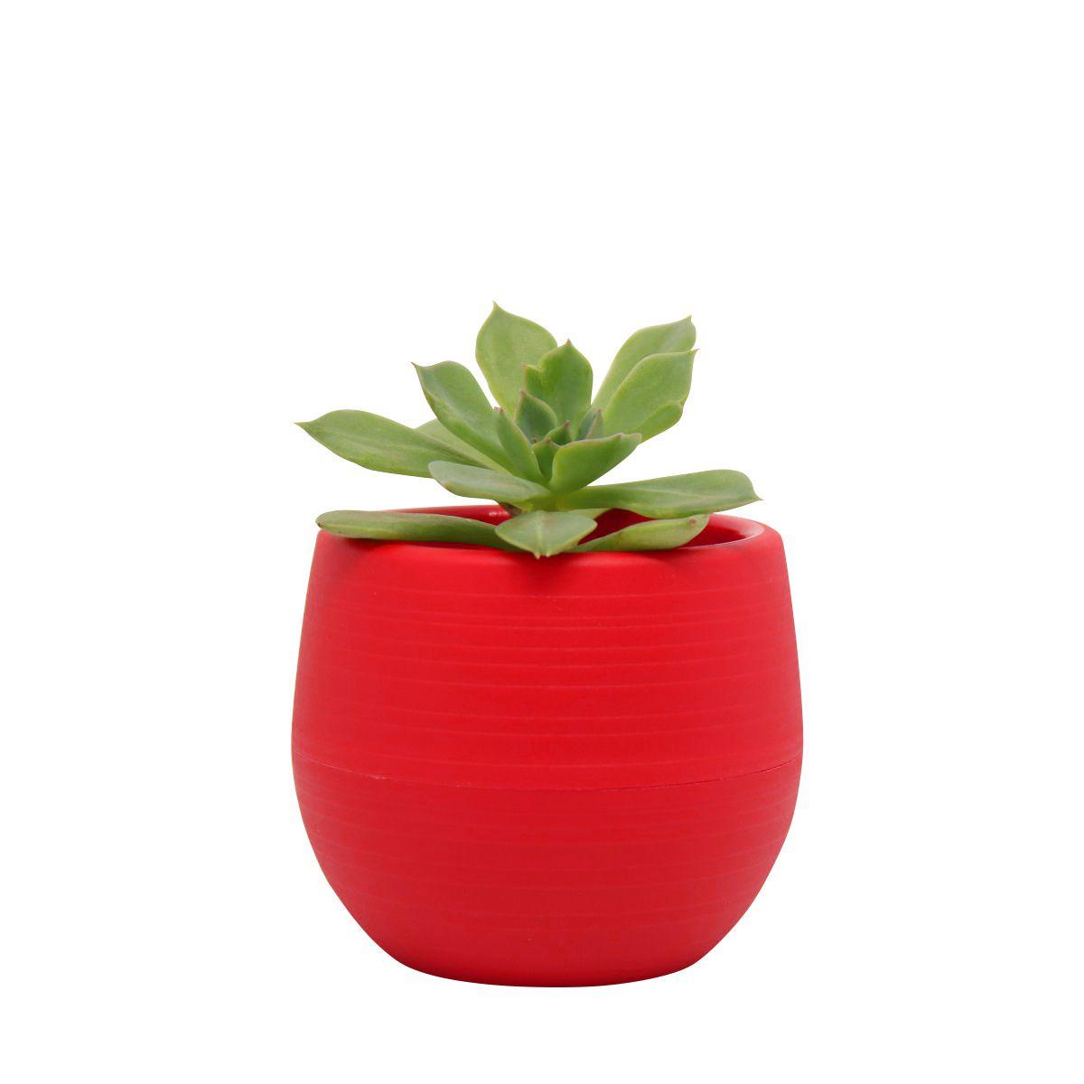 Vaso Babyball Vermelho 7cm x 7cm