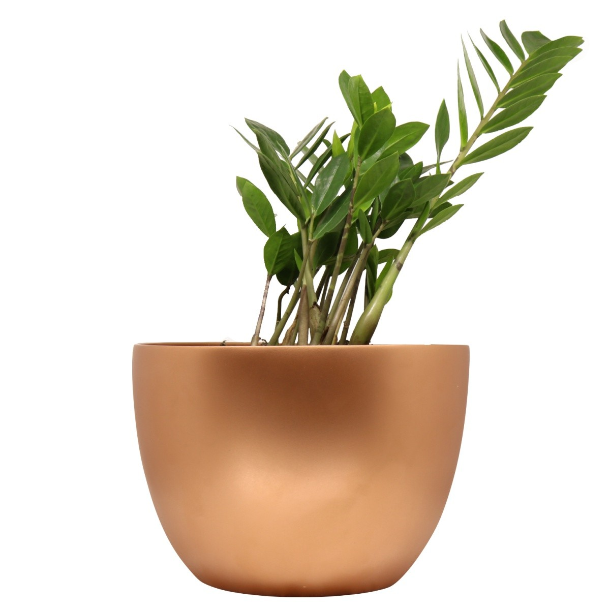 Vaso de Chão Bronze Novel Pequeno 21cm x 28cm - 5758