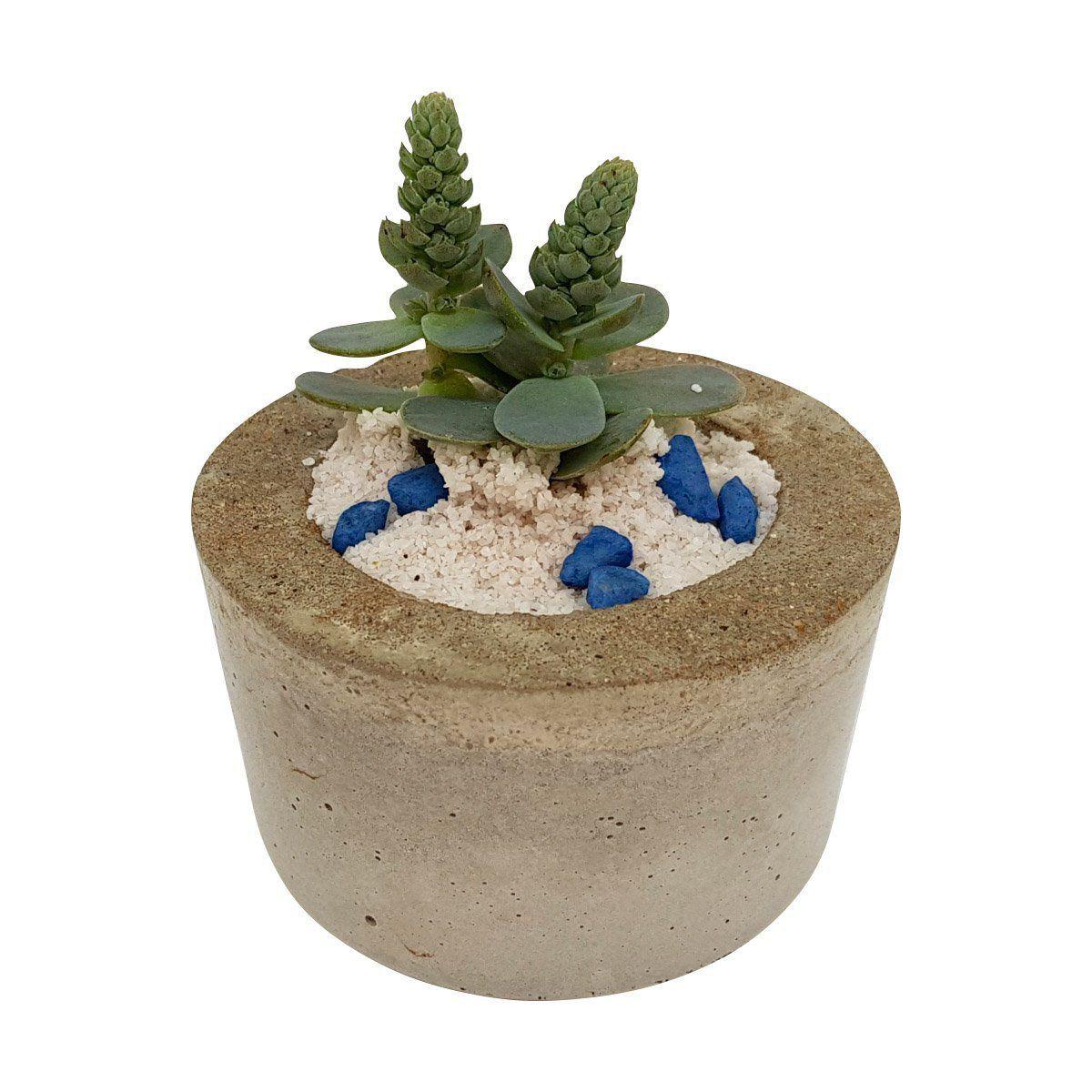 Vaso de cimento 5cm x 8cm MD06