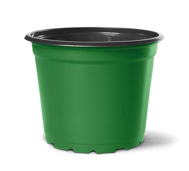 Vaso de Planta Holambra NP 15 Verde e Preto