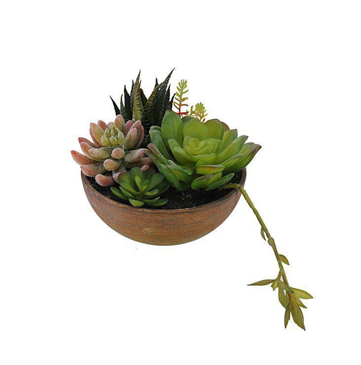 Vaso de suculentas artificiais sortidas X5 18cm Verde - 35023001