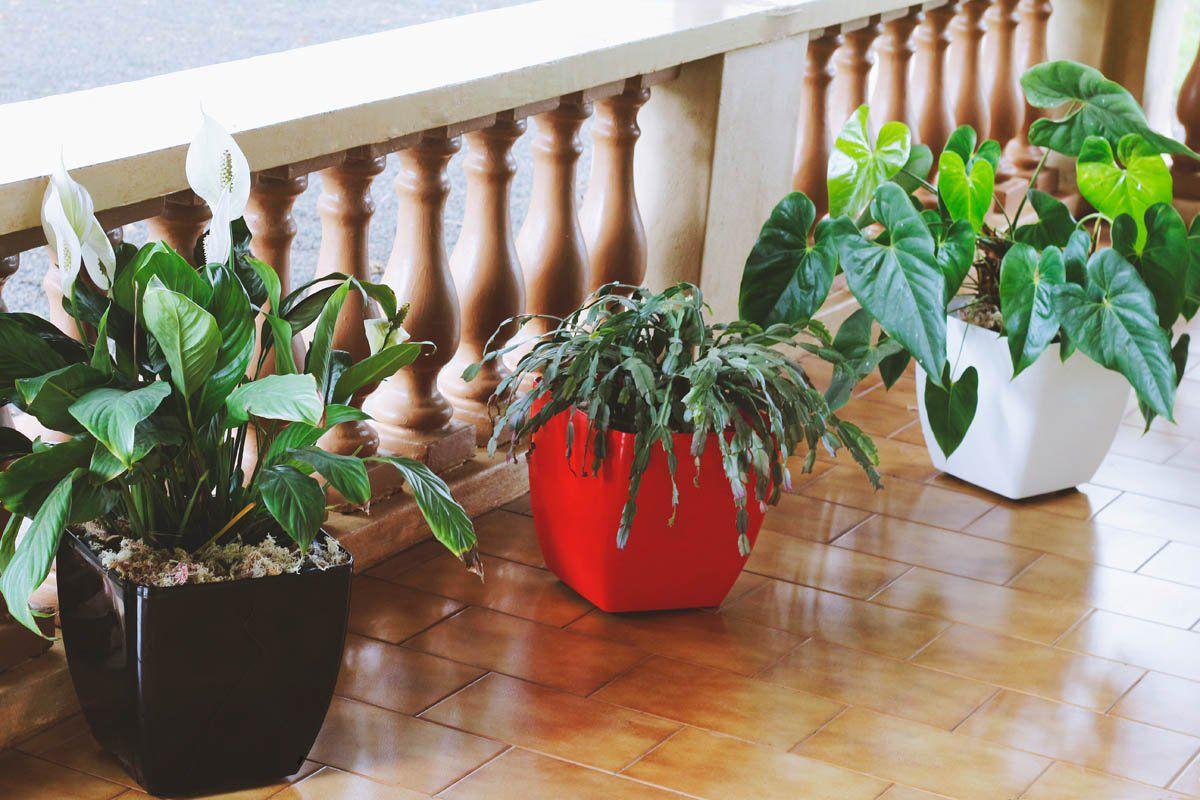 Vaso Quadrado Oxford 30cm x 30cm com Rodinhas Vermelho