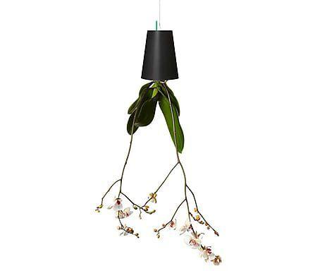 Vaso Sky Planter Seminate Autoirrigável Preto 13cm