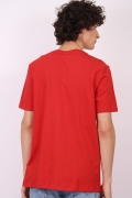Camiseta Masculina Robin Pose