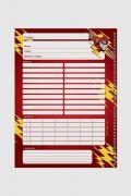 Caderno The Flash Running 1 Matéria