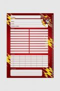 Caderno The Flash Anything is Possible 10 Matérias
