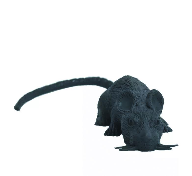 Rato de Borracha - Halloween