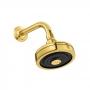 Chuveiro Acqua Plus com Tubo Standard 1990 Gold Deca