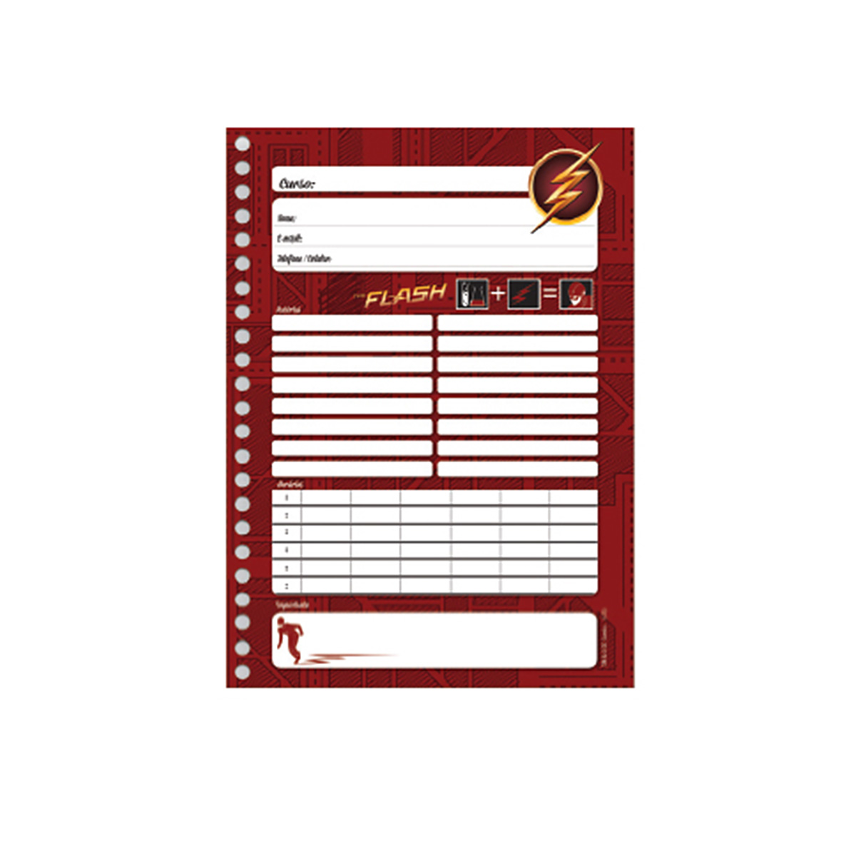 Caderno The Flash Serie Barry 10 Matérias