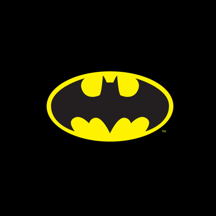 Camiseta Infantil DC Comics Batman Logo Name