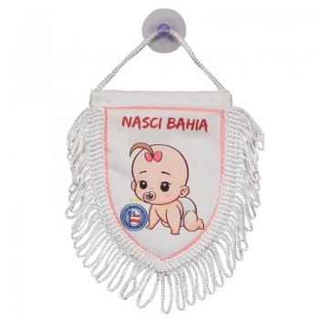 Bahia Born Bahia Mini Pennant