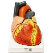 Coração gigante em 4 partes - Loja Civiam