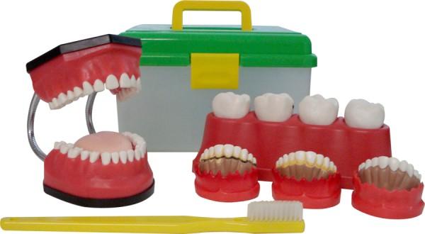 Kit Bocão de Saúde Bucal - Macromodelo Odontológico Avançado