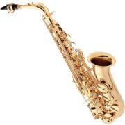 Saxofone ALTO EB SA-501 Laqueado Eagle