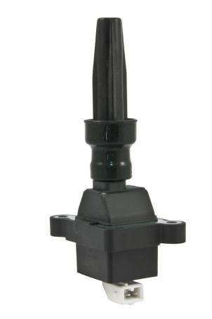 Bobina de Ignição Citröen Xsara 2.0, Peugeot 306 2.0 16V BAE 700 AK