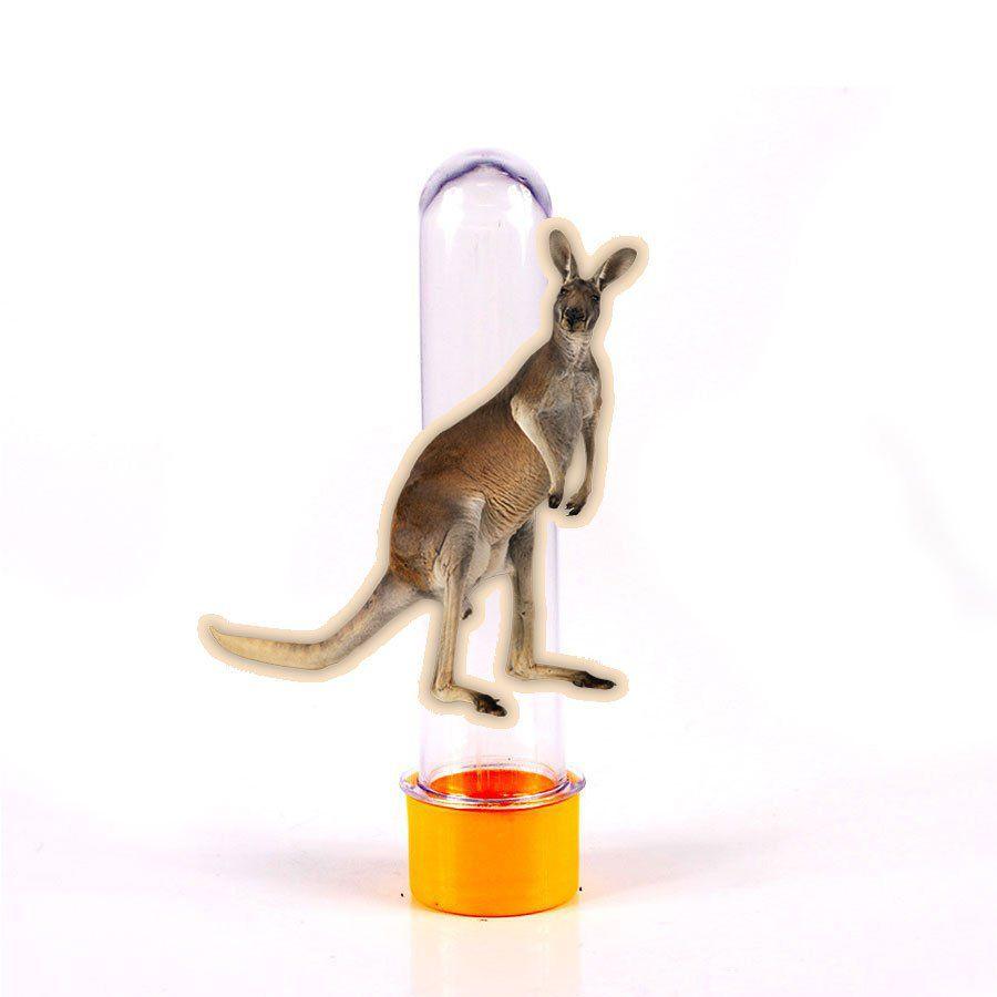 Lembrancinha Tubete Canguru Austrália