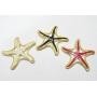 Pingente Dourado Resinado Estrela Do Mar  - PGT057
