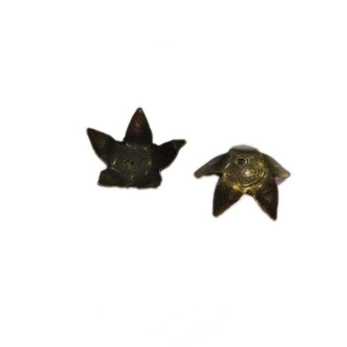 Tulipa ouro velho estrela (50 unid.)- TO001