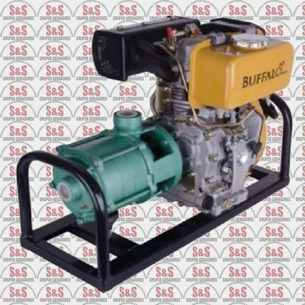 """Motobomba a Diesel de 1"""" x 1"""" Polegadas - Multi Estagio - Motor de 5,0 CV - Partida Manual - BFD P11/4 - Buffalo"""