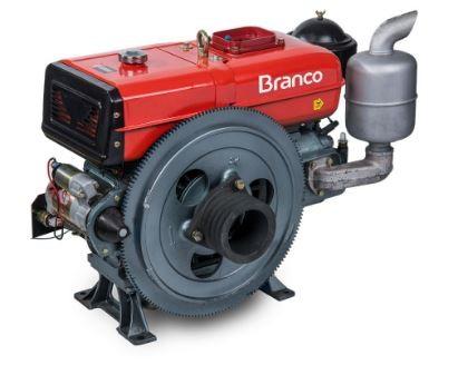 Motor a Diesel Refrigerado a Água 22,0CV 1195CC com Partida Manual - BRANCO