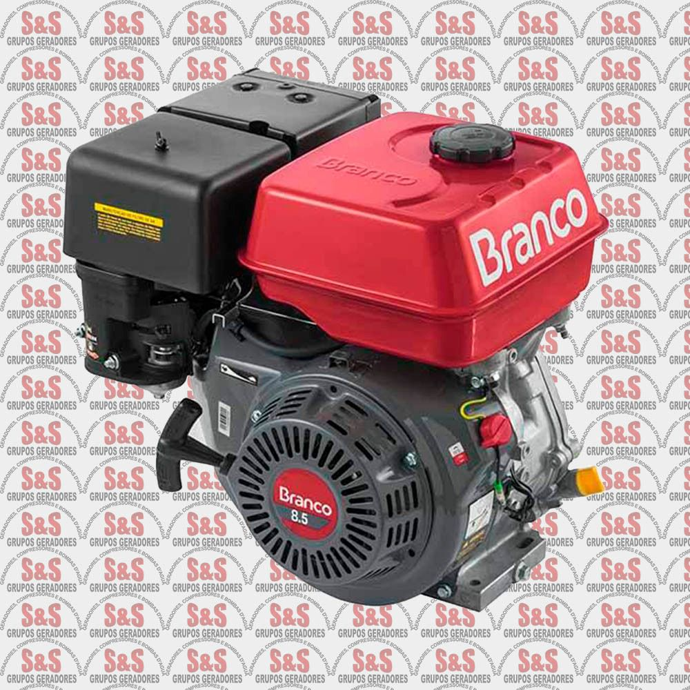 Motor Branco B4T 8,5 HP Part. Manual