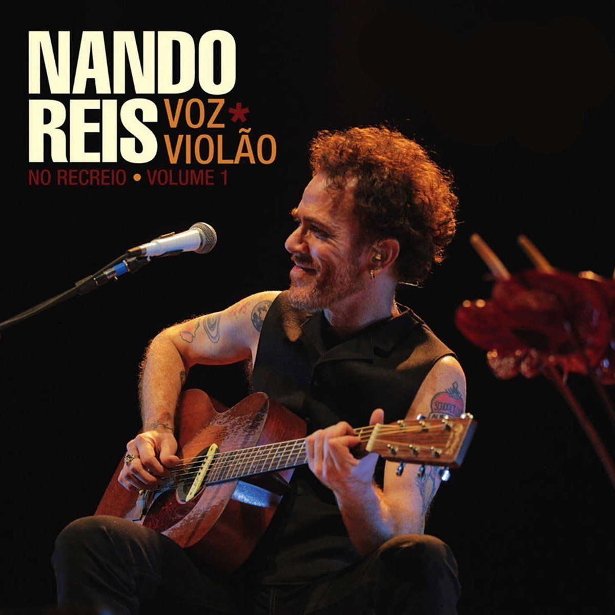 LP Duplo Nando Reis No Recreio Voz e Violão - Volume 1 Oficial  - bandUP Store Marketplace