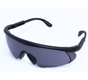 Oculos de Protecao Eagle Lente Cinza