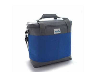 Bolsa Térmica Pratize 14 Litros - Azul