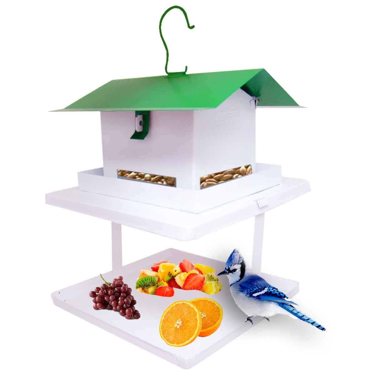 Comedouro Para Pássaros Com Fruteira Comedor Pássaros Fercar
