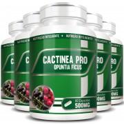 Cactinea Pro 500mg - Original - Opuntia Fícus - 05 Potes