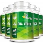Chá Verde 500mg - 05 Potes com 60 cápsulas (cada)