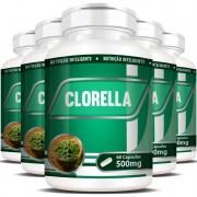 Clorela Original (Clorella) 500mg - 05 Potes com 60 cápsulas cada
