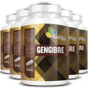 Gengibre 100% Puro - Original - 5 Potes
