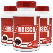 Hibisco - 100% Puro - 3 Potes c/ 60 cápsulas cada